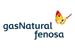 Grupo Gas Natural Fenosa amplia presença no Brasil